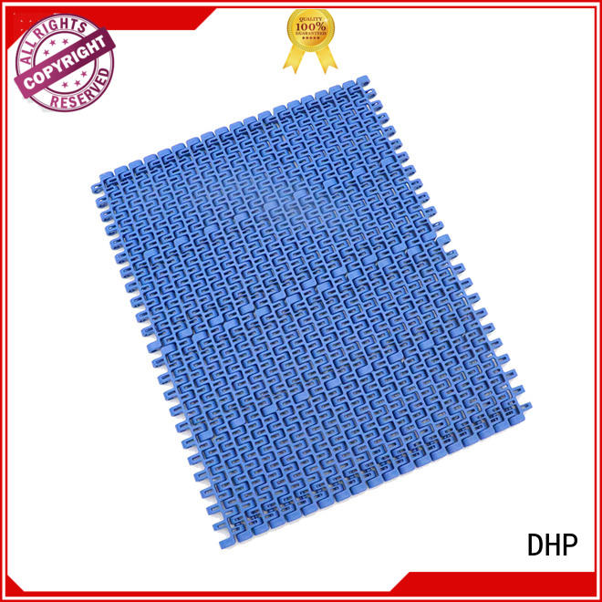 DHP practical factory conveyor belt pom material for conveyor machinery