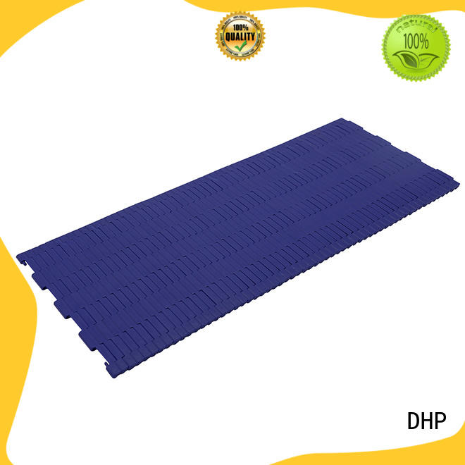 DHP stainless steel plastic conveyor chain factory for boxes conveyor