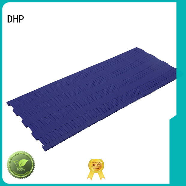 DHP perforated plastic conveyor chain manufacturer for food conveyor