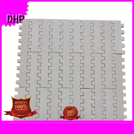 DHP flat top conveyor belt system manufacturer for food conveyor